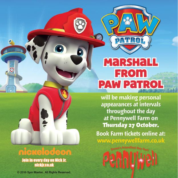 PAW Patrol Half Term