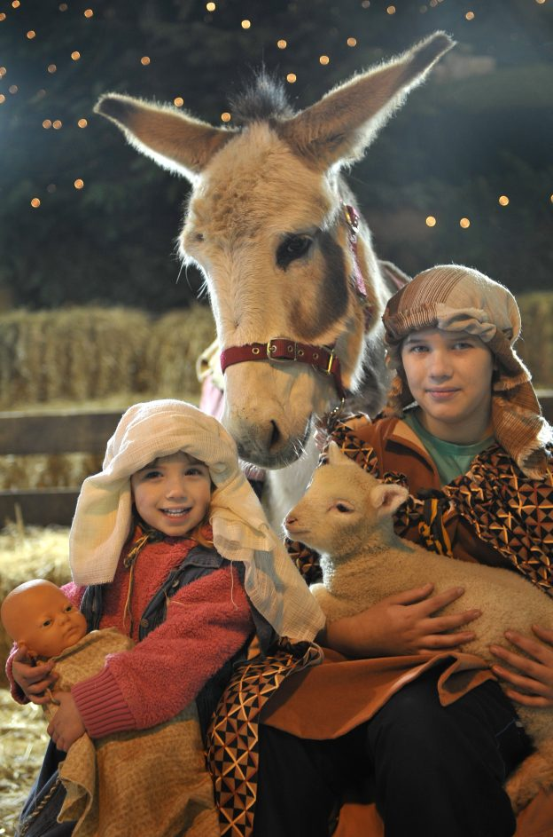 Mary, Joseph and donkey in the Pennywell Nativity