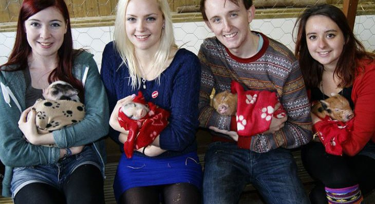 Pennywell Farm - Perfect for couples and friends