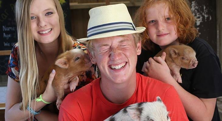 Pennywell Farm - Perfect for families