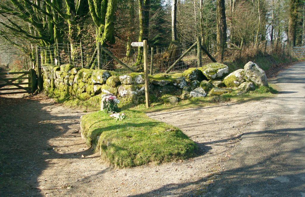 Jays Grave near Hound Tor