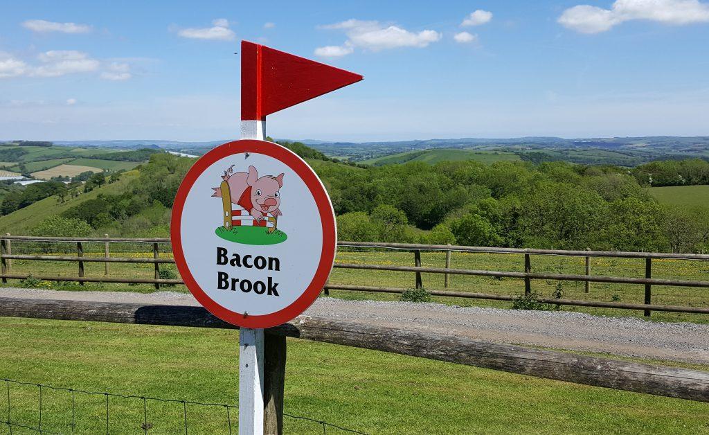 Pig Racing Sign