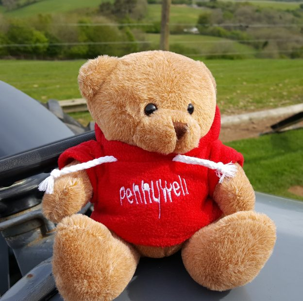 Pennywell FREE soft toy